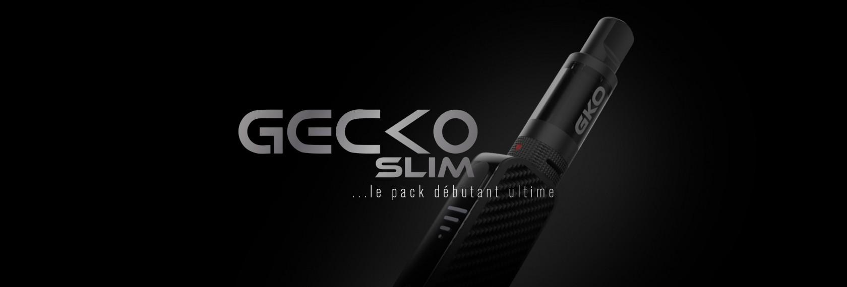 GECKO SLIM, Le pack débutant ultime